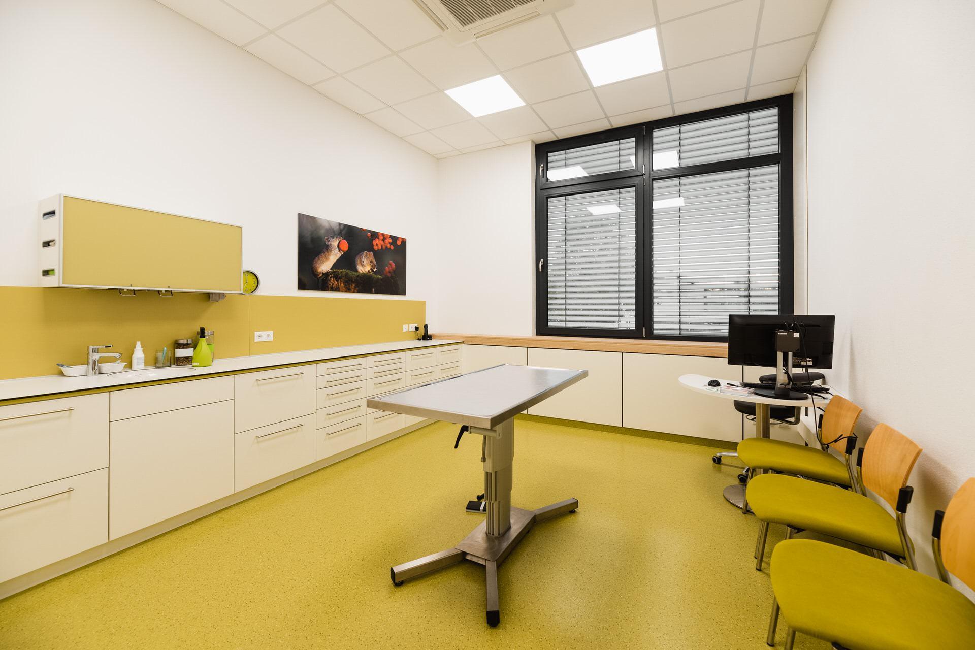 Behandlung - Tierarzt Bayreuth Bamberg