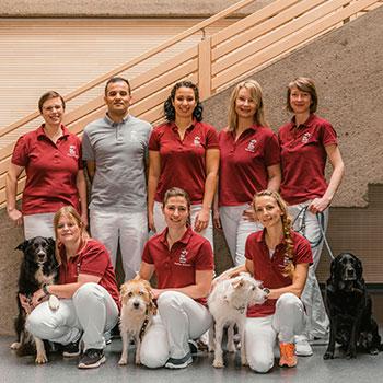 Tierarzt Bayreuth Team