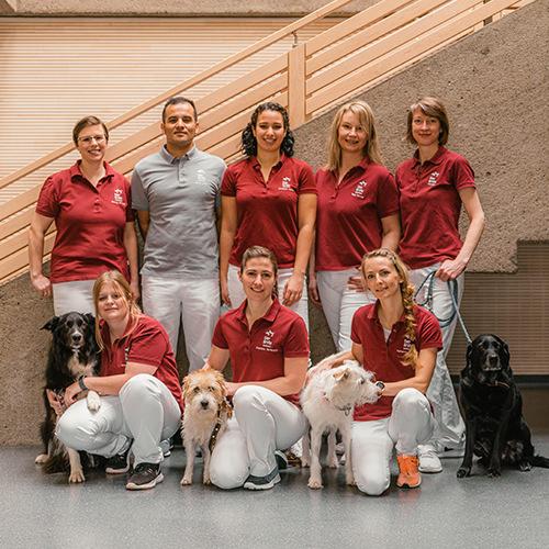 Team Tierärzte Wonsees